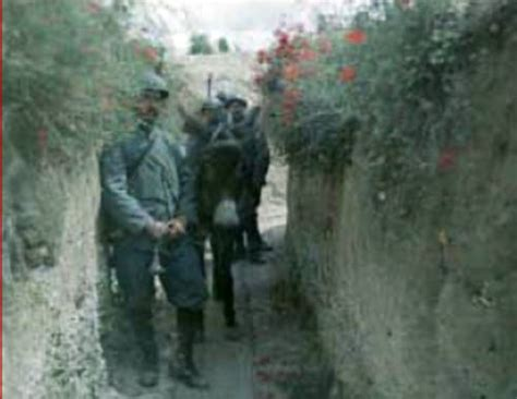 Flanders Fields Pictures & WW1 Photos