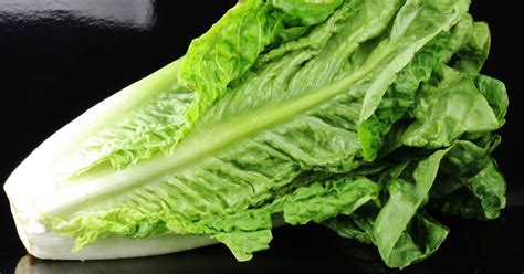 Stay away from romaine lettuce, Consumer Reports advises
